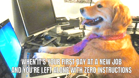 Left Alone on First Day of Work Meme