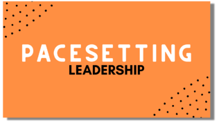 Pacesetting Leadership Flexi Card with Shadow
