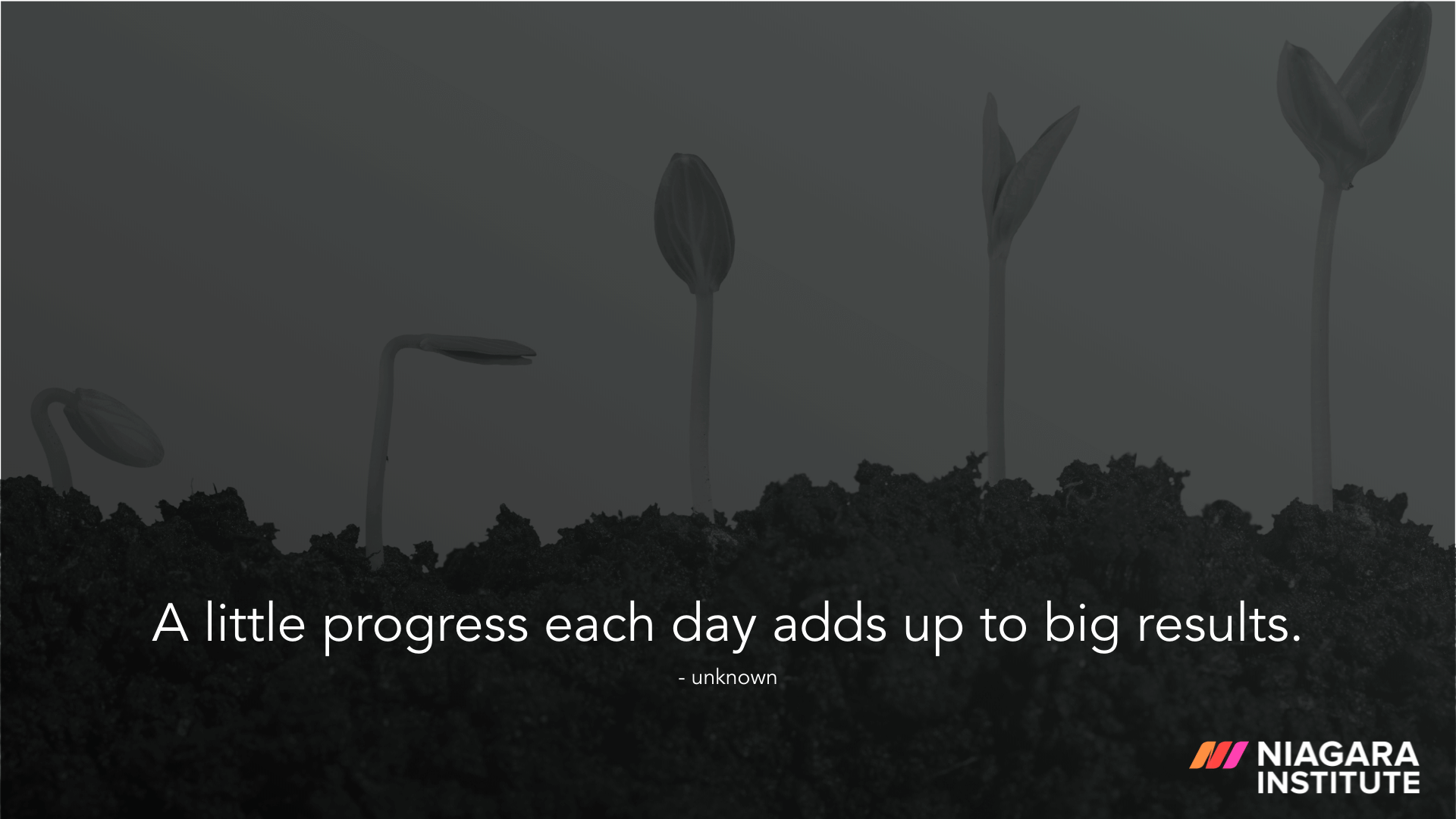 A little progress each day adds up to big results. - Unknown